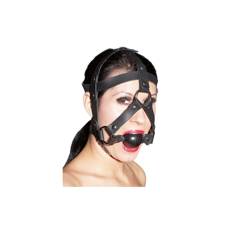 Leder-Kopfgeschirr