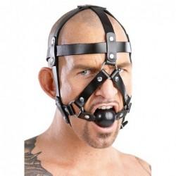 Leder-Kopfgeschirr Bild 2
