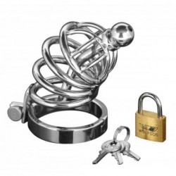 Asylum 6 Ring Locking Keuschheitskäfig kaufen